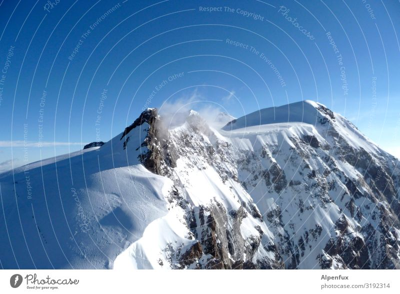 Schwarzhorn from the south Climate Climate change Beautiful weather Ice Frost Snow Hill Rock Alps Mountain Monte Rosa Peak Snowcapped peak Glacier Cool (slang)