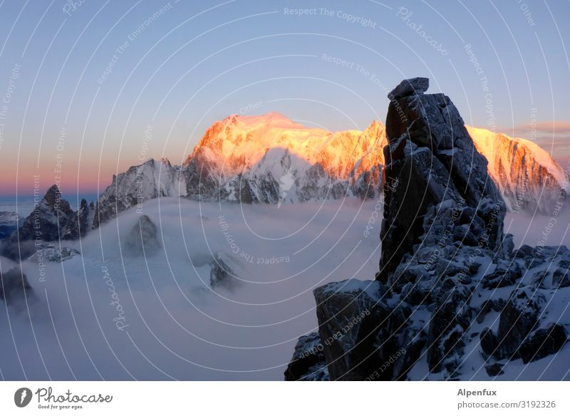 Alpine Glow XXL Climate Climate change Rock Alps Mountain Mont Blanc Peak Snowcapped peak Glacier Illuminate Joy luck Contentment Joie de vivre (Vitality)