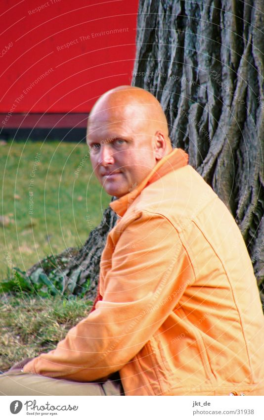 fortunetellers Red Tree Man Bald or shaved head Esotericism Fortune-telling Orange