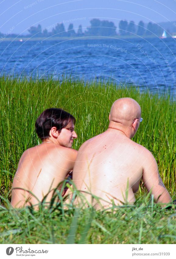 Woman Man Water Ocean Summer Grass Couple Lake In pairs Common Reed