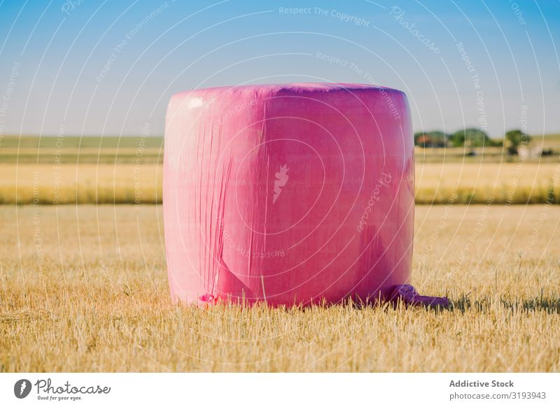 Bales wrapped with pink plastic Agriculture Bale of straw Breasts Cancer Wrap Cereal Landscape Farm Field Gold Grain Harvest Hay Haystack Nature Pink Plastic