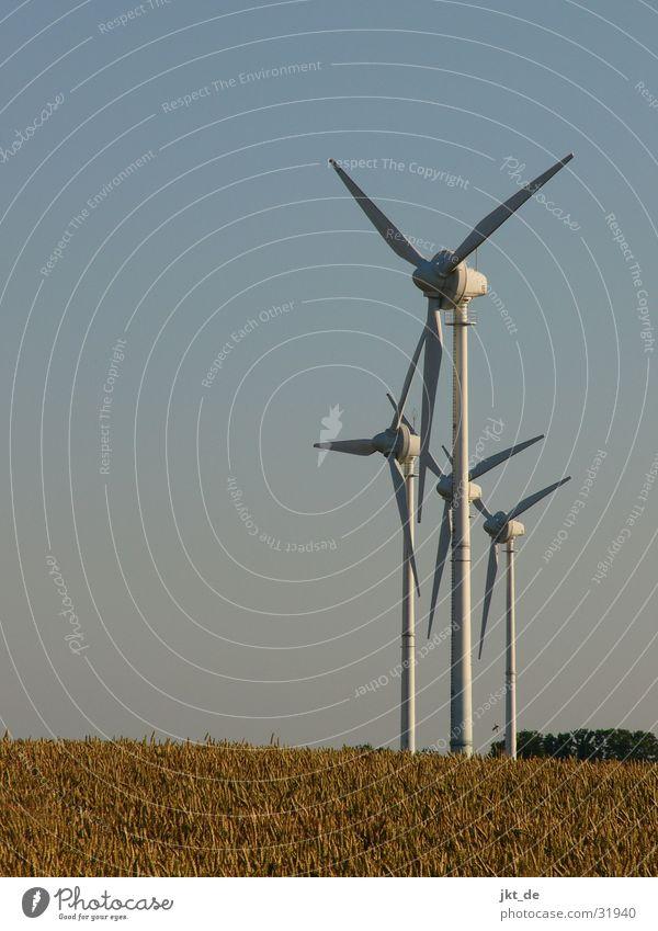 Summer Energy industry Electricity Wind energy plant Cornfield Alternative Mecklenburg-Western Pomerania