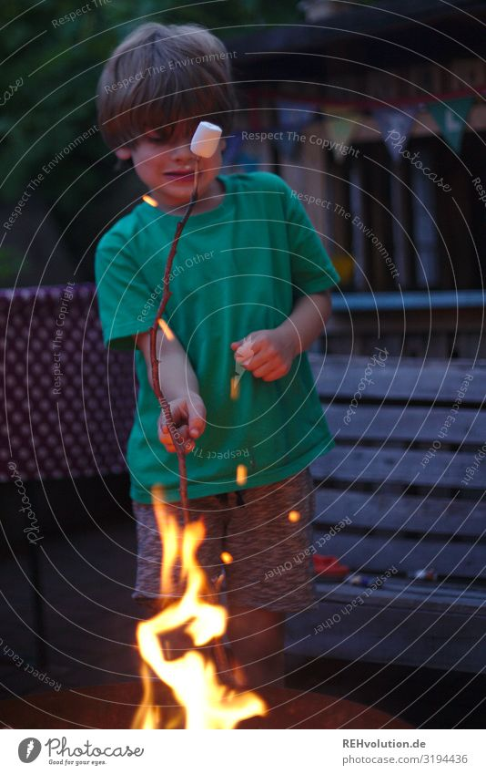 Child with marshmallow by the fire Fire campfire Hot Summer warm blaze ardor T-shirt Boy (child) Infancy Garden Eating Sweet Food Delicious Joy luck fun natural