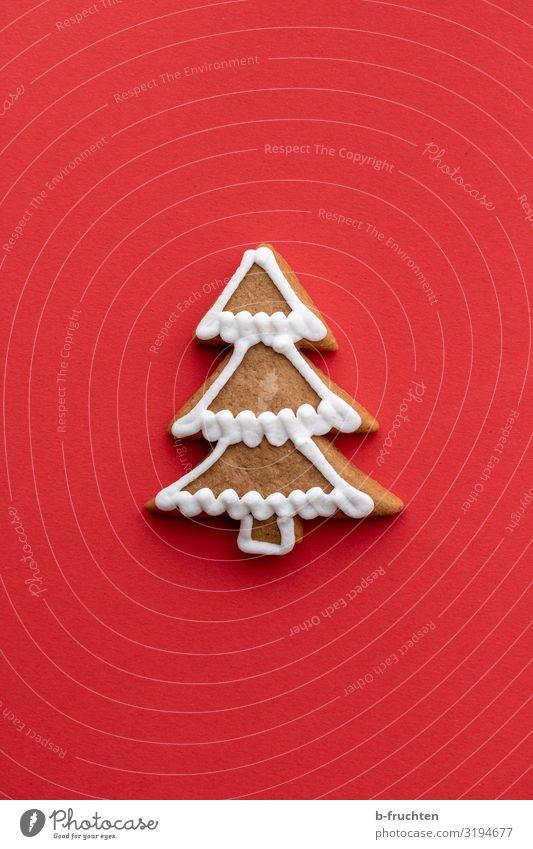 Christmas tree gingerbread Food Dough Baked goods Candy Feasts & Celebrations Christmas & Advent Tree Decoration Sign Select Eating To enjoy Fresh Red
