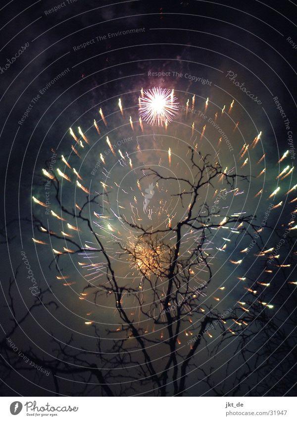 Tree New Year's Eve Leisure and hobbies Firecracker Zurich