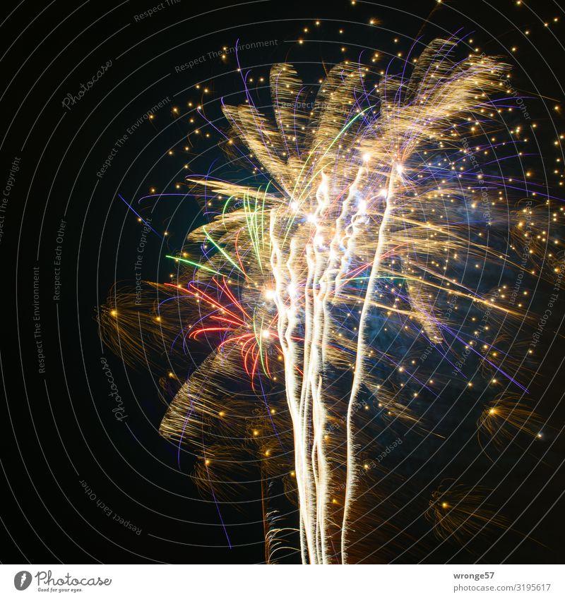 New Year's fireworks display New Year's Eve Feasts & Celebrations Glittering Illuminate Large Near Multicoloured Joy Happiness Firecracker Rocket tail
