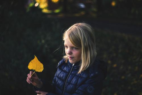 Child Human being Nature Plant Leaf Joy Girl Autumn Environment Natural Contentment Dream Blonde Smiling Infancy Happiness