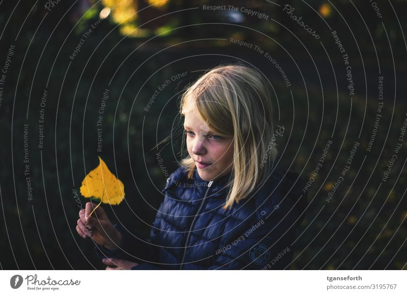 Girl with autumn leaves in her hand Child Infancy 1 Human being 8 - 13 years Nature Autumn Plant Leaf Observe Smiling Looking Blonde Simple Friendliness