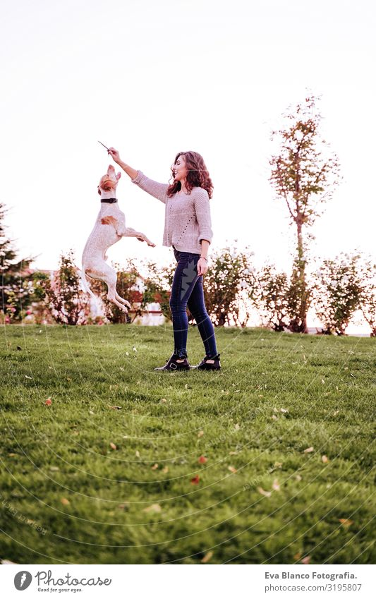 young woman playing with her dog at the park. autumn season. dog jumping Portrait photograph Woman Dog Park Youth (Young adults) Exterior shot Love Pet owner