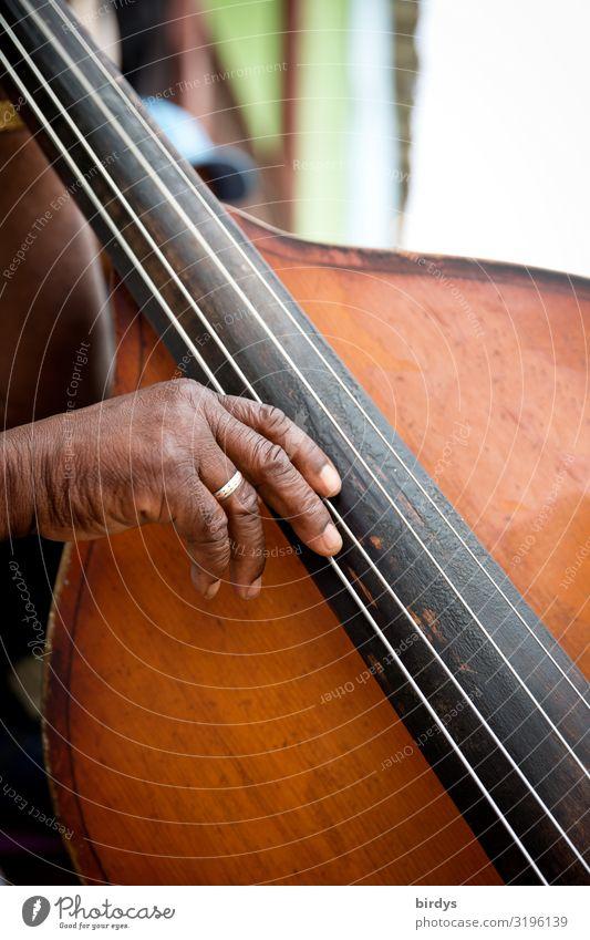 bass plucker Joy Make music Music Musician Masculine Grandfather Senior citizen Life Hand 1 Human being 60 years and older Double bass Cuban Authentic