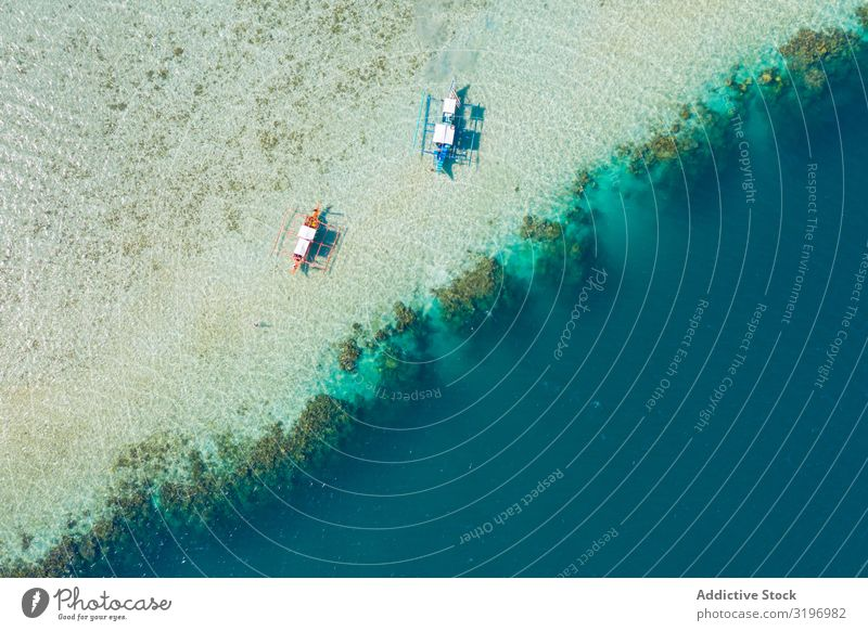 Aerial view of boats on shallow Watercraft Shallow Aircraft Height Altimeter drone view Sand Coast at rest Beach Ocean Blue Vantage point Nature