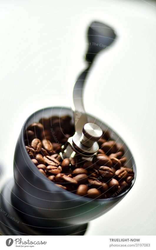 I'll make some coffee... Food Coffee bean Nutrition Breakfast To have a coffee Organic produce Beverage Coffee grinder Lifestyle Style Design Exotic Joy