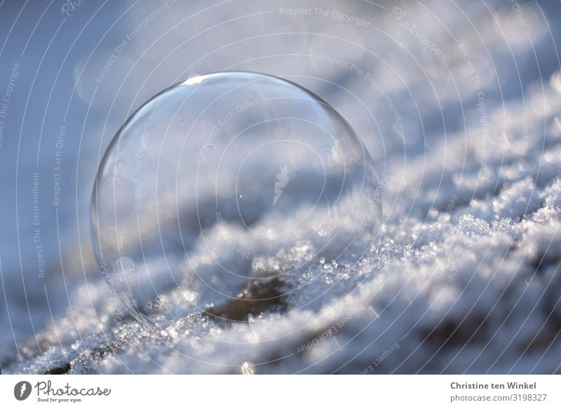 Soap bubble on snow Winter Ice Frost Snow Esthetic Exceptional Glittering Bright Beautiful Cold Kitsch Round Blue White Joy Happiness Uniqueness Creativity Ease