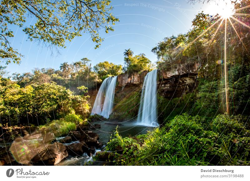 Iguazu: Two Sisters Vacation & Travel Tourism Expedition Summer vacation Plant Water Cloudless sky Spring Tree Bushes Moss Virgin forest River Waterfall