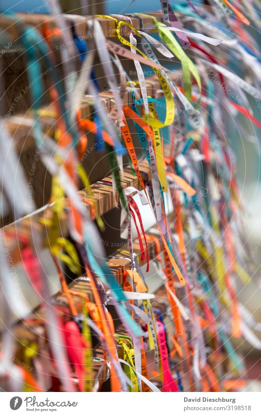 Bonfim bands Vacation & Travel Tourism Sightseeing City trip Summer vacation Multicoloured Brazil String Happy Souvenir Salvador de Bahia Wind Chained up