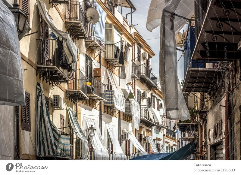 Covered Palermo Sicily Italy Europe Town Capital city Port City Old town House (Residential Structure) Manmade structures Building Architecture Wall (barrier)