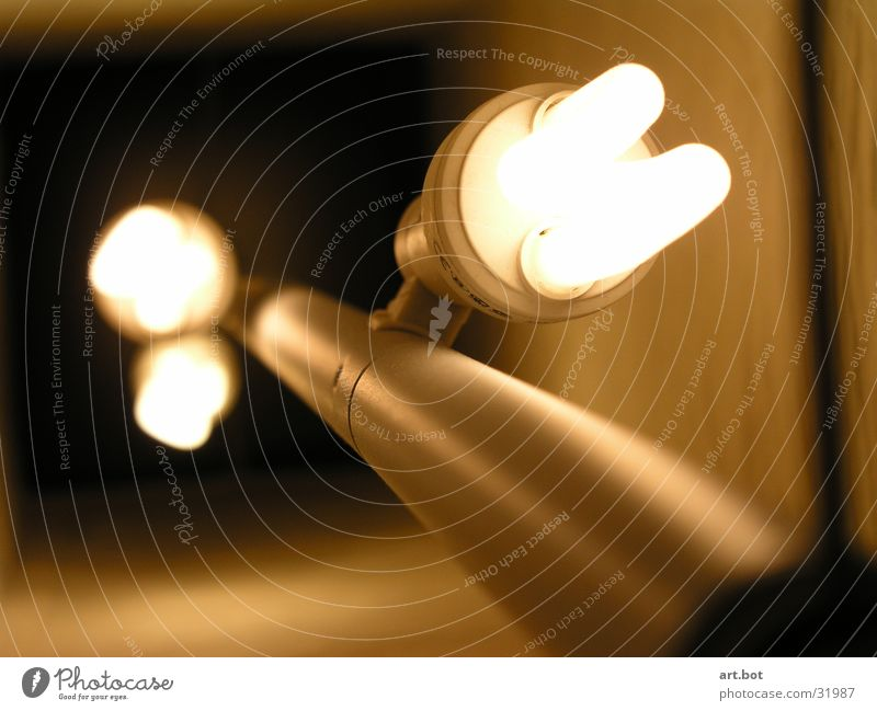 Light - unshielded Lamp Living or residing light bulb Close-up