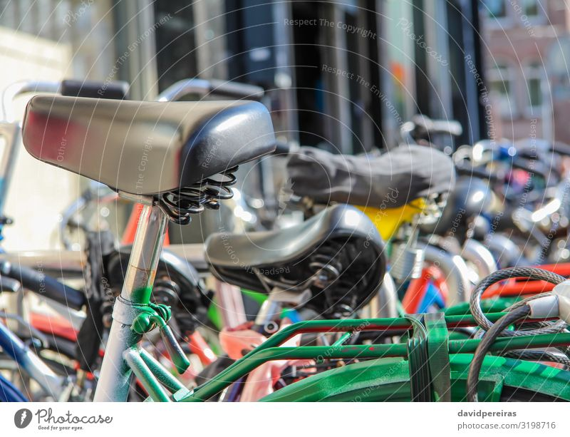Detail of bikes parked in the street Lifestyle Beautiful Leisure and hobbies Vacation & Travel Sports Culture Transport Street Vehicle Metal Steel Old Black