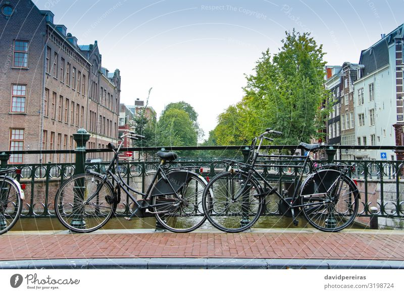 Couples of bikes over the canal of Amsterdam Lifestyle Vacation & Travel Tourism House (Residential Structure) Culture Tree River Town Places Bridge Building