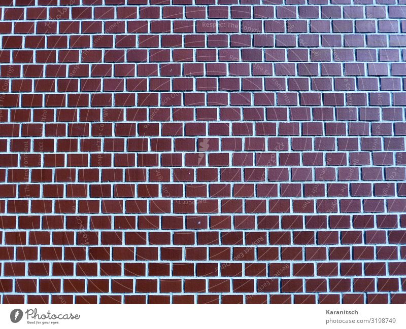 brick wall House building Architecture Manmade structures Wall (barrier) Wall (building) Brick Build Brown Red Protection Calm Style Brick wall Facade