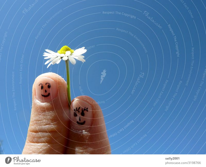 tactful... Human being Couple Partner Face Fingers fingertips 2 Cloudless sky Spring Beautiful weather Flower Daisy Touch Blossoming To hold on To enjoy