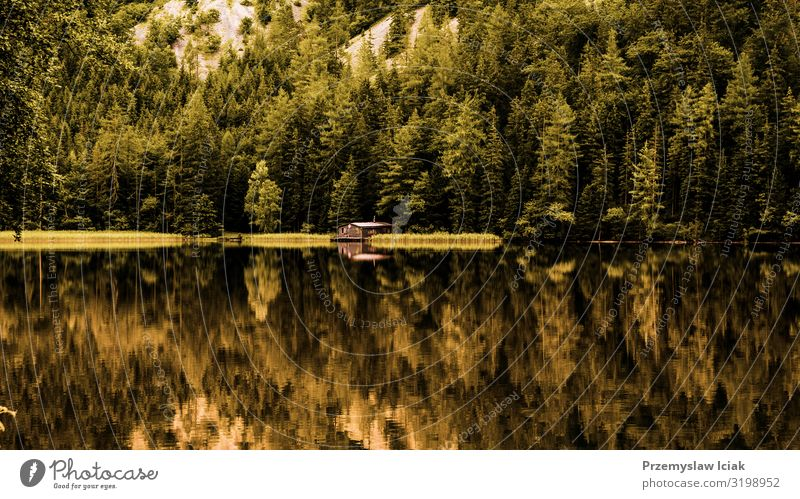 View of wooden cottage in green pine forest by the blue lake in rural summer Austria, Leopoldsteinersee Summer background cabin coast countryside dock europe
