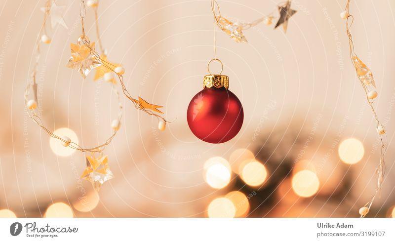 Christmas & Advent Beautiful Red Warmth Religion and faith Feasts & Celebrations Moody Design Decoration Illuminate Glittering Elegant Star (Symbol) Cute Soft