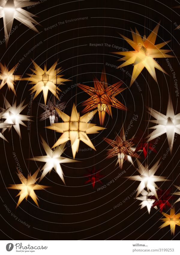 shining advent stars - sidereal hours Christmas & Advent Advent stars Star (Symbol) Christmas decoration Christmas star Christmas fairy lights Illuminate