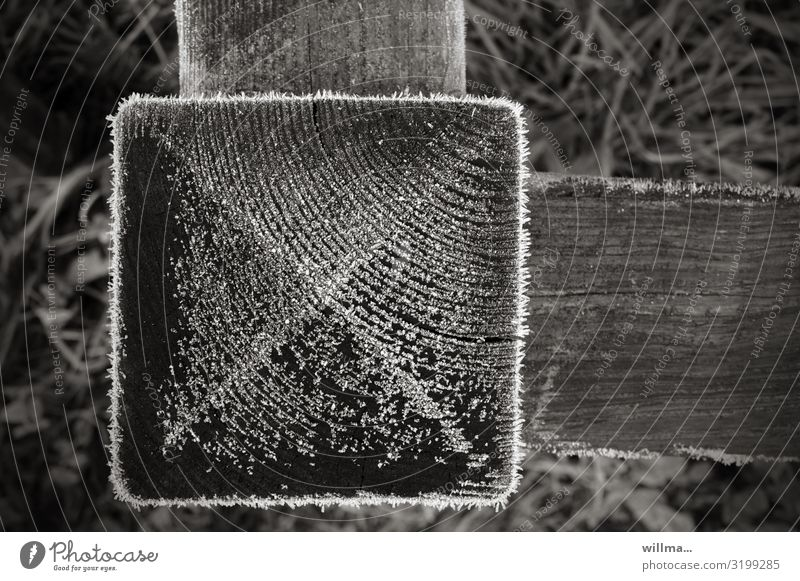 Hoarfrost on a wooden square, detail of a fence Hoar frost Cold chill Winter Frost Wood Pole wooden posts Garden fence Fence ice crystals Square At right angles