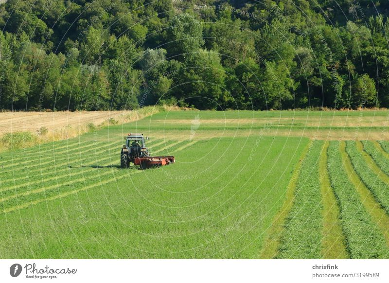 Tractor on a green meadow Work and employment Profession Farmer Agriculture Machinery Engines Environment Climate change Meadow Field Vehicle Poverty Life