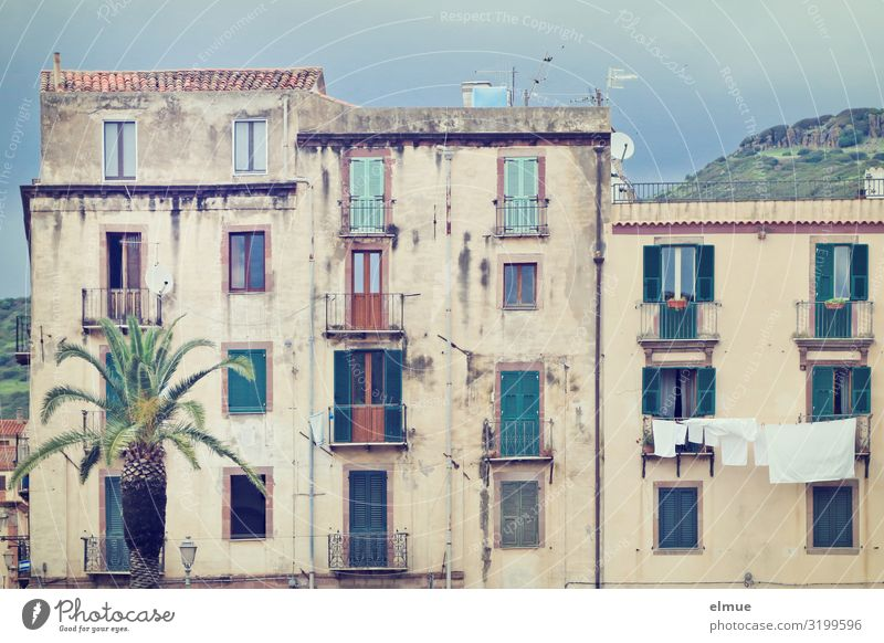 Behind the palm tree Living or residing Palm tree pink Italy Sardinia Small Town Old town House (Residential Structure) Facade Balcony Authentic Simple