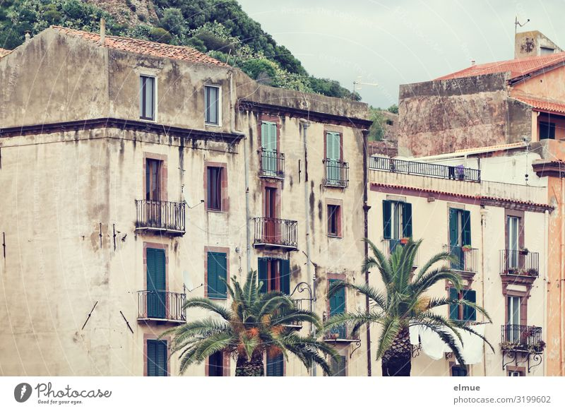 Living in the countryside Vacation & Travel Palm tree Italy Italian Sardinia pink Small Town House (Residential Structure) Facade Balcony Old Authentic Historic