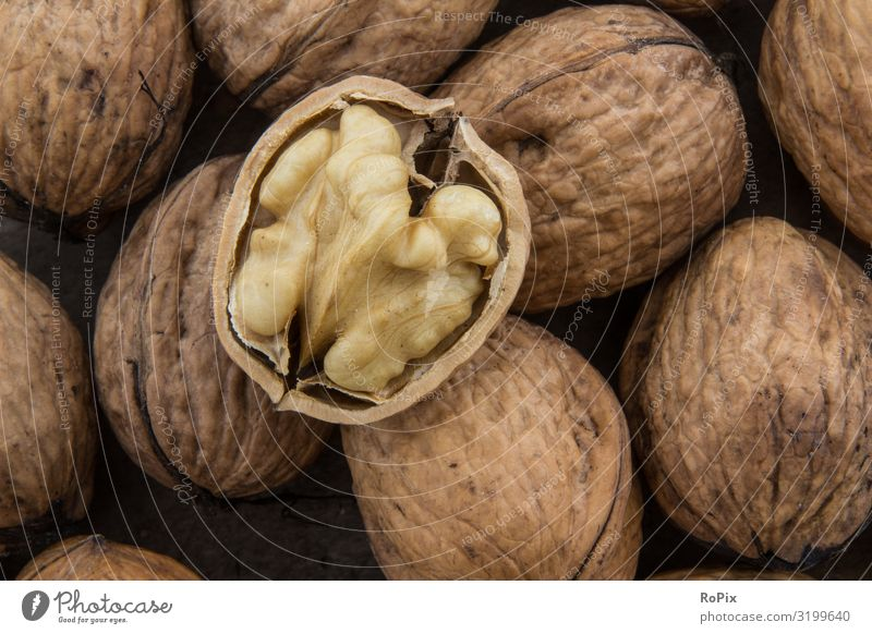 nutty Food Fruit Nut Walnut Organic produce Vegetarian diet Lifestyle Healthy Healthy Eating Fitness Wellness Leisure and hobbies Work and employment Profession