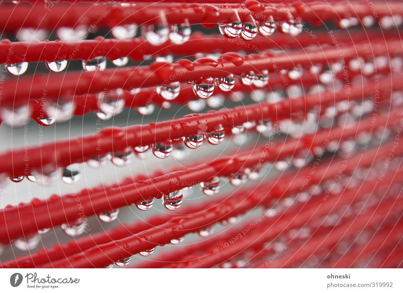 bad weather Water Drops of water Rain Rope Line Wet Red Colour photo Exterior shot Pattern Shallow depth of field