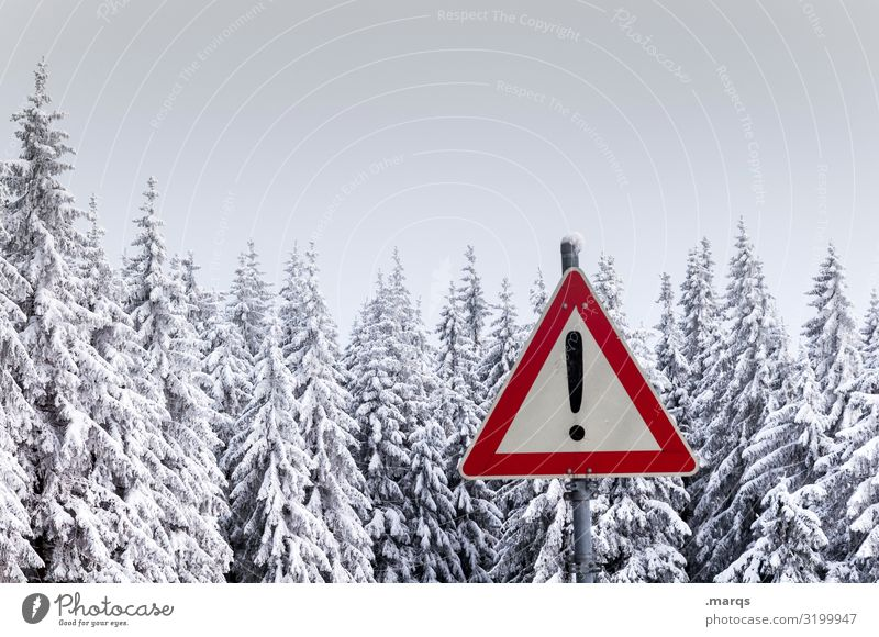 Attention Winter Nature Landscape Snow Coniferous trees Coniferous forest Treetop Forest Sign Signs and labeling Road sign Exclamation mark Cold Climate Caution