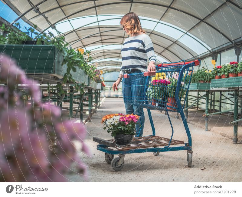 Female customer with cart on flower market Woman Flower Cart Shopping Plant Markets Greenhouse Gardening Adults Human being Pensive Customer Stand Think