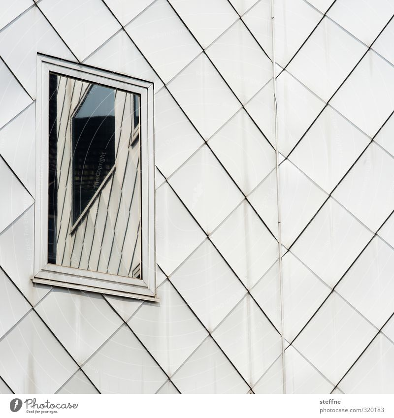 A window to yourself Cologne Cologne-Ehrenfeld Facade Window Esthetic Unclear Reflection Subdued colour Exterior shot Abstract Structures and shapes Deserted