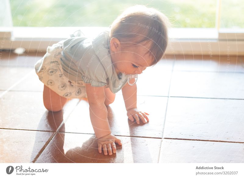 Baby with nipple in mouth crawling on all fours on floor Nipple Crawl Small babyhood Cute Playing Joy exploring Beautiful Cheerful Infancy Discovery pretty