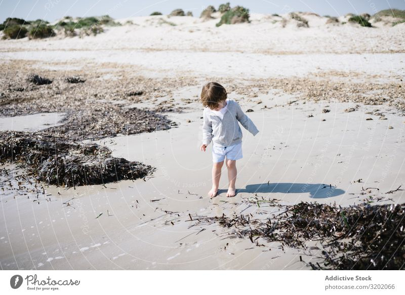 Barefoot child in short watching waves on sandy beach Child Small Sand Wave Beach babyhood Cute Joy exploring Beautiful Cheerful Infancy Discovery pretty