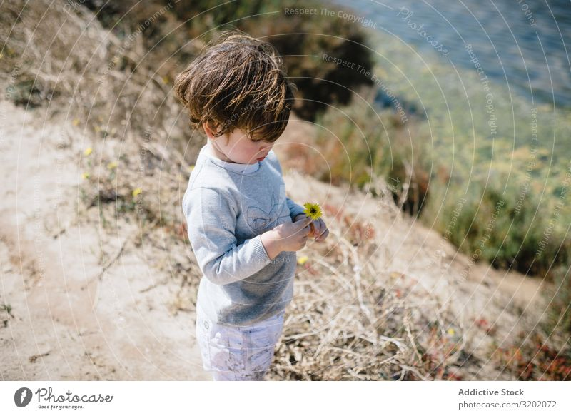 Child looking at flower in hands in mountains with interest Small Flower Sand Mountain babyhood Cute Playing Joy exploring Beautiful Cheerful Infancy Discovery