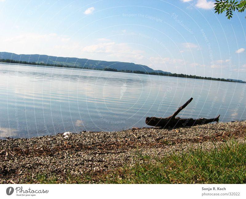 summer idyll Summer Physics Lake Beach Sun Warmth Water Coast