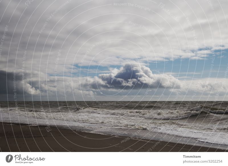North Sea with beach, clouds and waves North Sea coast North Sea beach Water Waves Sand Clouds Sky Weather Gray Blue Beach Vacation & Travel Denmark