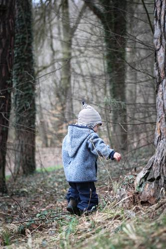 Boy in the forest Trip Child Boy (child) Infancy 1 Human being 1 - 3 years Toddler Tree Forest Pants Jacket Cap Hooded (clothing) Discover Playing Small Blue