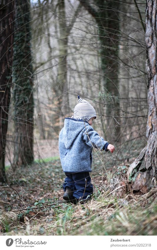 Child Human being Blue Tree Forest Boy (child) Small Playing Brown Gray Trip Infancy Discover Protection Pants Cap