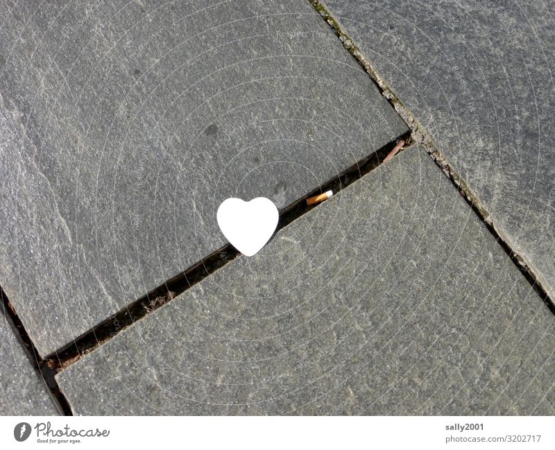 White Love Sadness Lanes & trails Lie Heart Transience Sidewalk Kitsch Trashy Piece of paper Lovesickness Stationery Disappointment Fiasco Lose