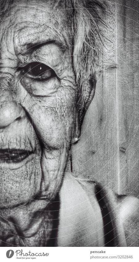 skin thing | wrinkle throwing Human being Feminine Female senior Woman Grandmother Senior citizen Skin Face 1 60 years and older Old Authentic Exceptional Dark
