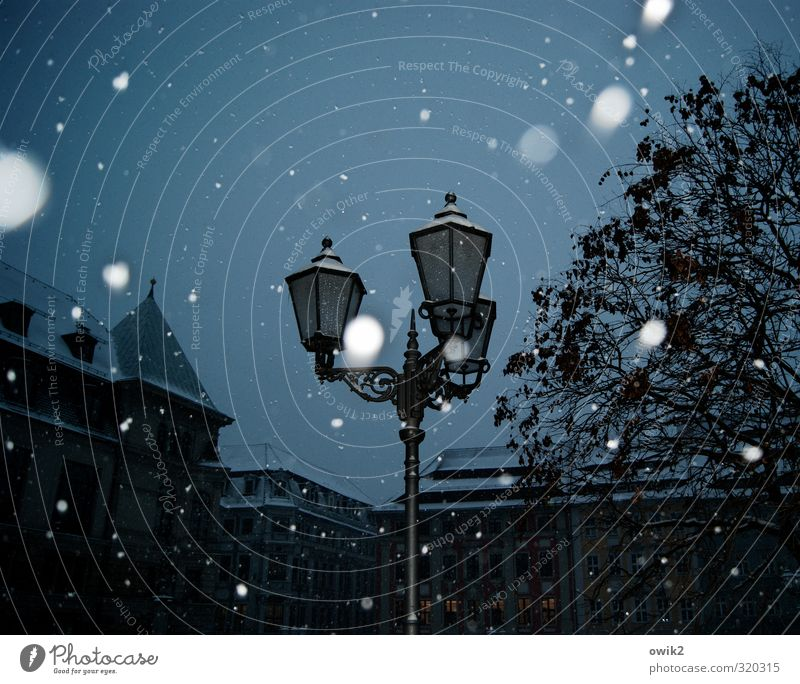After the snow is before the snow Sky Winter Climate Weather Beautiful weather Snowfall Tree Downtown Populated House (Residential Structure) Lantern