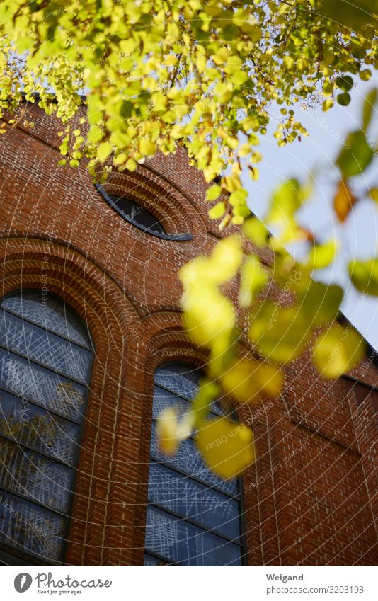 church Stone Red Church Belief Christianity Church service Autumn Building liturgy Colour photo Exterior shot Copy Space bottom Shallow depth of field
