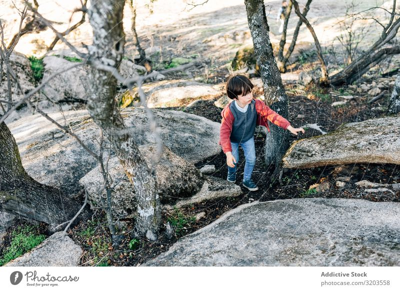 Little boy walking on rocky hill Boy (child) Nature explore Forest Rock Hill Child Infancy Action Dream Park Discovery Vacation & Travel Recklessness Seasons