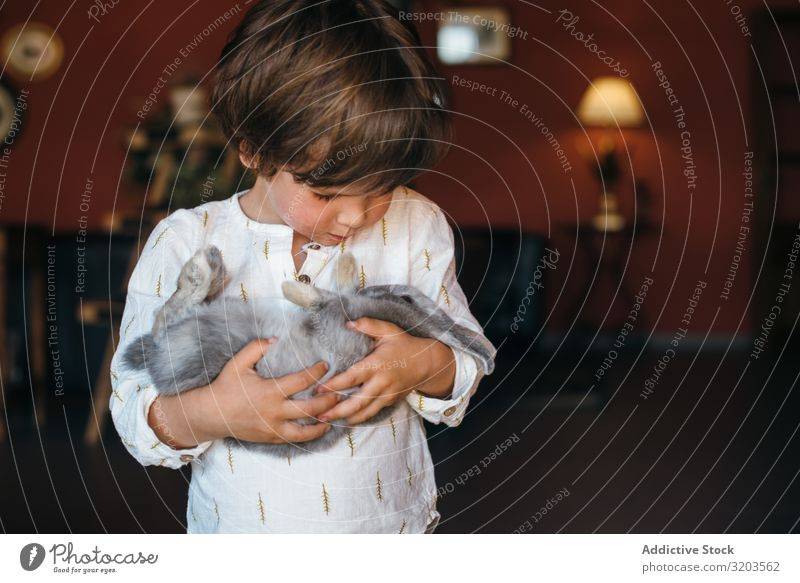 Charming boy with furry bunny Boy (child) Hare & Rabbit & Bunny Delightful Animal Cute Pet Child Happy Infancy Friendship Hold Considerate Innocent Purity
